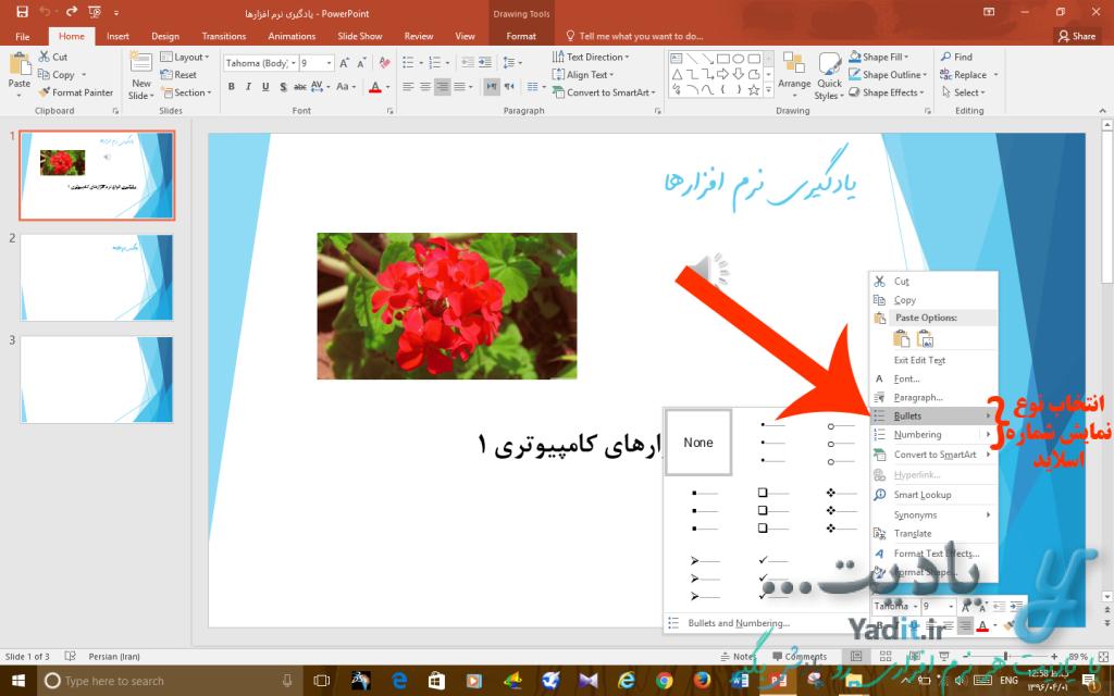 انتخاب نوع نمایش شماره اسلاید مورد نظر