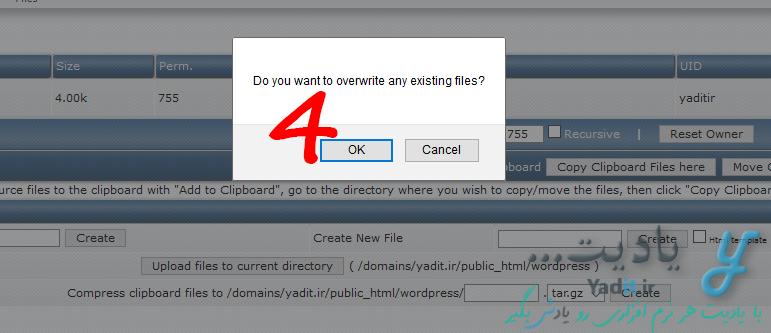 کپی کردن یا جا به جایی دسته جمعی چند فایل در DirectAdmin