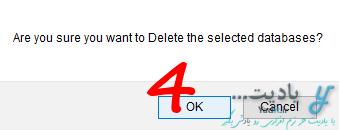تایید حذف یک یا چند پایگاه داده (Database)