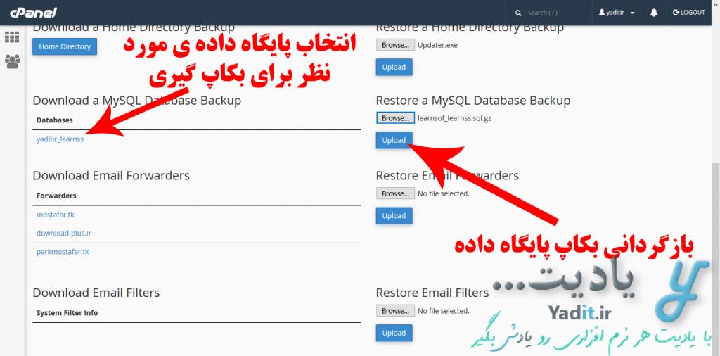 بکاپ گیری از پایگاه داده سایت در هاست Cpanel و بازگردانی آن