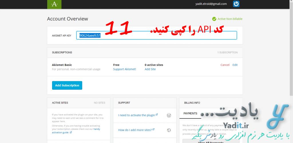 کپی کد API دریافت شده برای راه اندازی افزونه Akismet