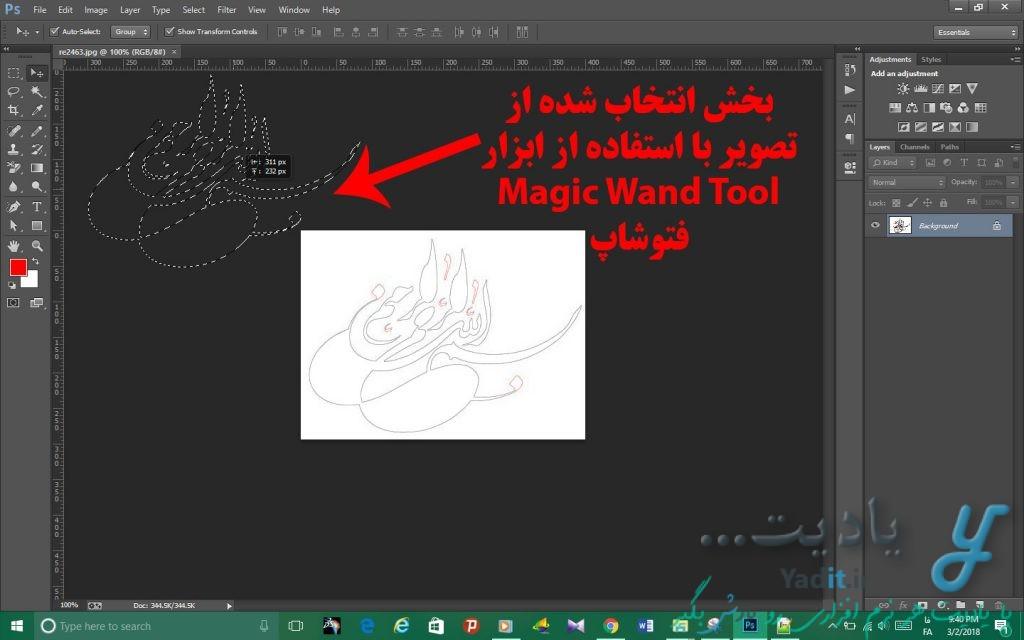 بخش انتخاب شده از تصویر با استفاده از ابزار Magic Wand Tool فتوشاپ