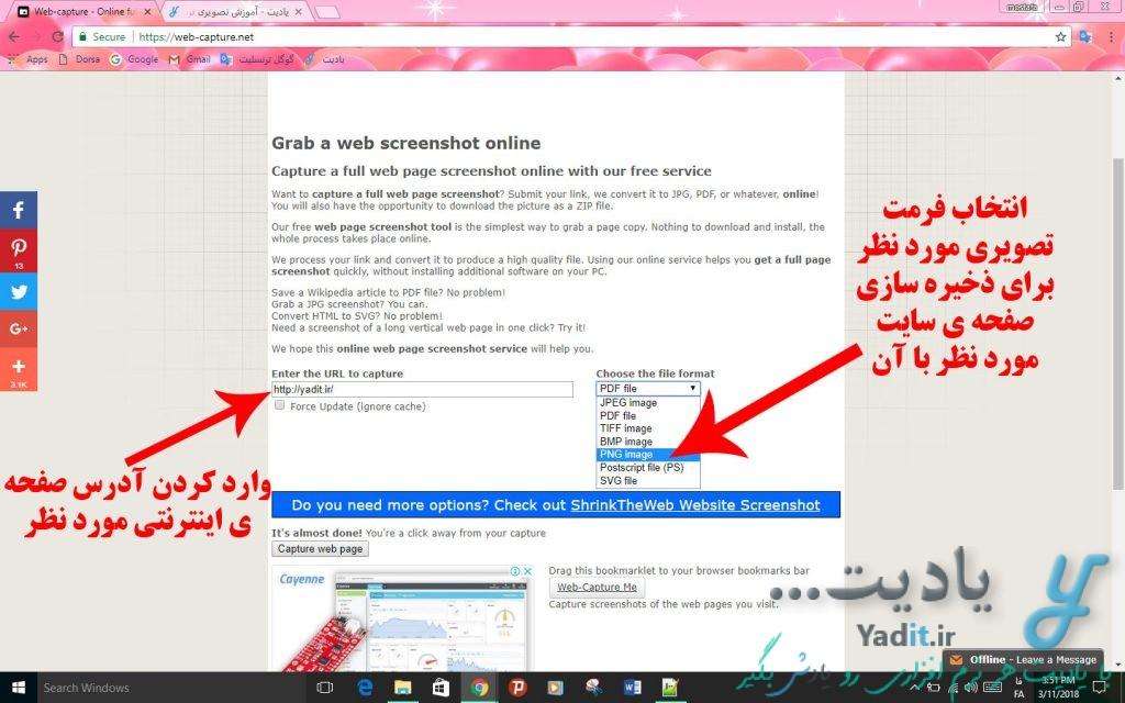 وارد کردن آدرس صفحه ی اینترنتی مورد نظر و انتخاب فرمت تصویری دلخواه برای ذخیره سازی آن