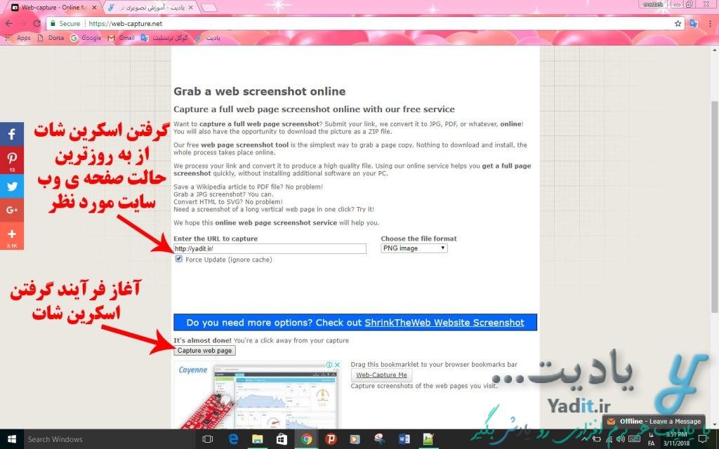 آغاز فرآیند گرفتن اسکرین شات از وب سایت مورد نظر