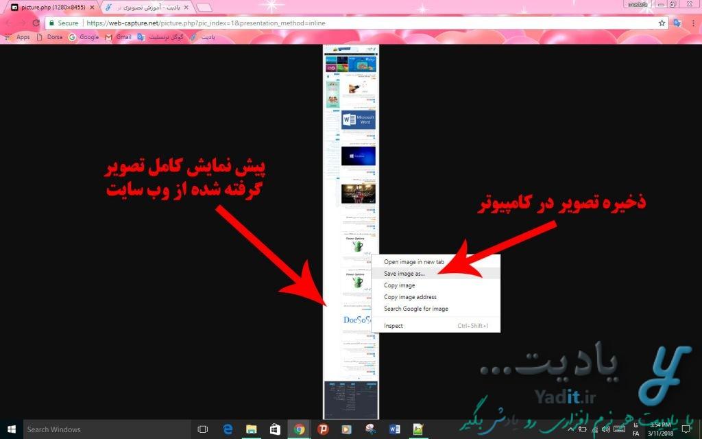 پیش نمایش کامل تصویر گرفته شده از وب سایت مورد نظر در مرورگر