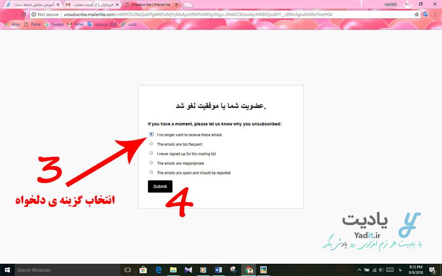 انتخاب یک علت برای لغو اشتراک ایمیل های دریافتی از طرف وب سایت نمونه اول