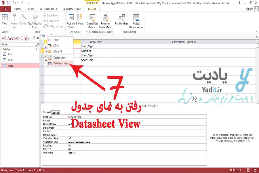 محیط جدول (Datasheet View)